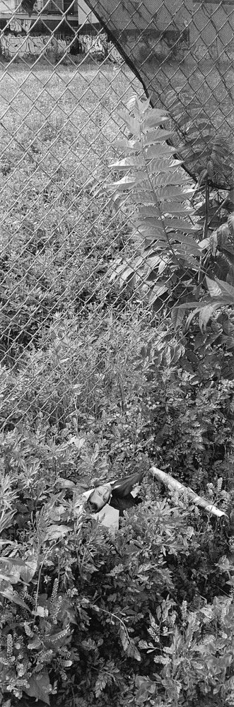 Santella-Dennis-Harlem-Gardens-202.jpg
