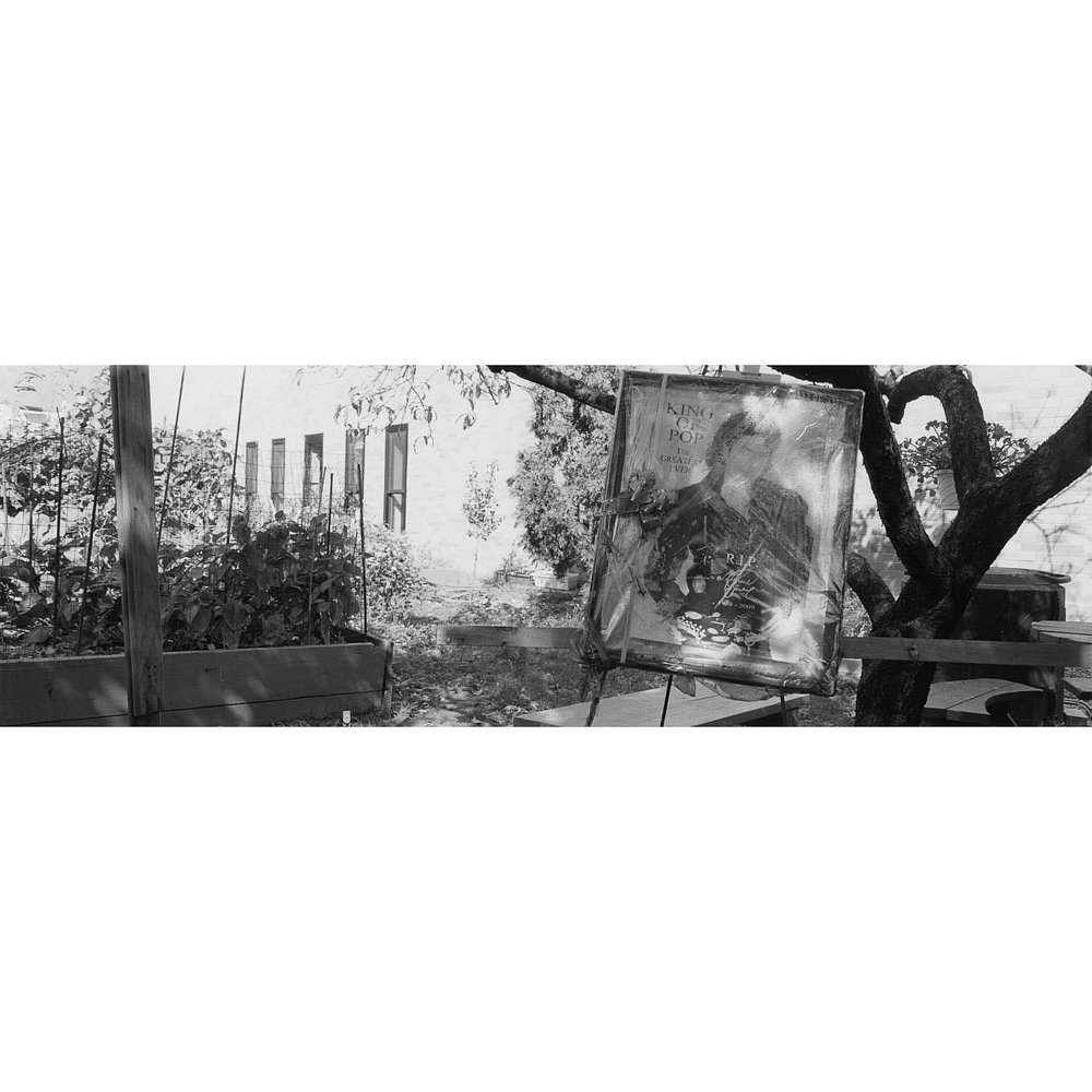 Santella-Dennis-Harlem-Gardens-303.jpg