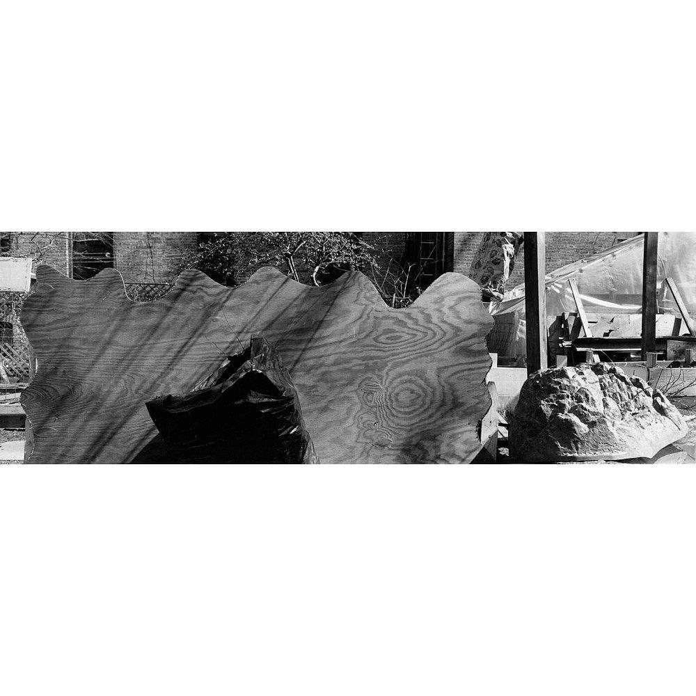 Santella-Dennis-Harlem-Gardens-505.jpg